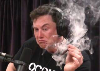 Илон Маск пожаловался, что людей на Земле становится слишком много. Возможно, некоторых придется переселить на Марс