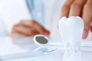 В Китае научились «выращивать» зубы