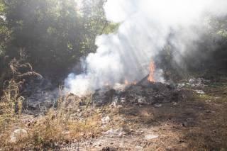 На окраине Киева горел лес
