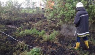Киев опять накрыло едким дымом. Пожарные пока не могут справиться
