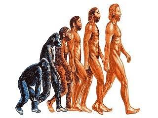 В РПЦ назвали теорию Дарвина совершенно ненаучной
