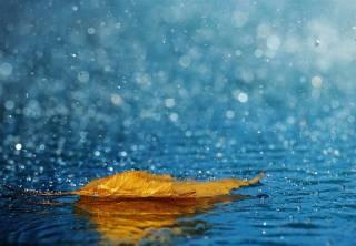 Синоптики рассказали о похолодании и дождях по всей Украине