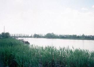 В Днепре из-за нерадивых коммунальщиков озеро залили нечистотами и химией