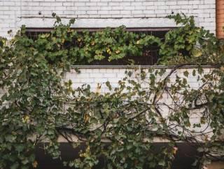 В Киеве парень выпал с балкона, держа в руках ключи от квартиры