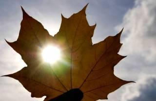 Украинцы переживают день осеннего равноденствия: что нужно знать