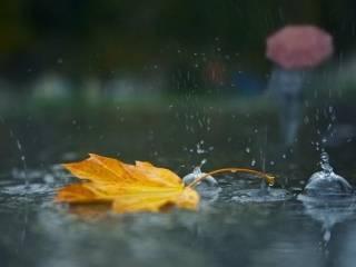 В Киеве польют дожди и сильно похолодает