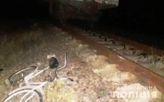 Под Киевом поезд сбил пьяного велосипедиста