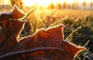 Синоптики пообещали украинцам несколько «морозных» ночей