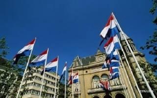 Парламент Нидерландов решил поискать вину Украины в крушении малазийского «Боинга»