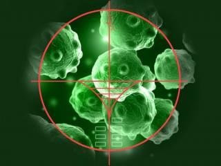 Ученые объяснили, почему раковые опухоли не поддаются лечению