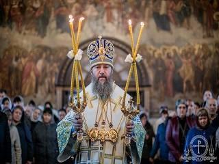 Митрополит Антоний рассказал, что побуждает человека уходить в монашество