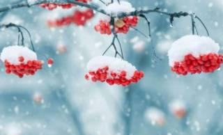В Гидрометцентре рассказали украинцам, какой будет грядущая зима