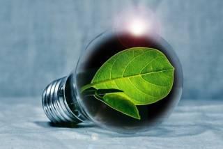 Как «зеленая» энергетика отразится на рейтинге власти