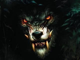 На Черниговщине неизвестный зверь отправил на тот свет пенсионерку