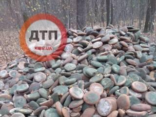 В киевских лесах нашли огромную свалку испорченного хлеба