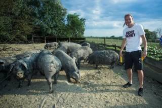 Известный хорватский футболист придумал прибыльный бизнес, играя за киевское «Динамо»