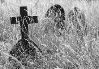 Крест на Зе-реформах