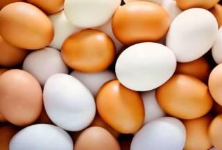 В Индии мужчина умер из-за глупого спора с яйцами