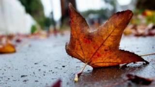 Синоптики поведали украинцам о сюрпризах погоды на следующей неделе
