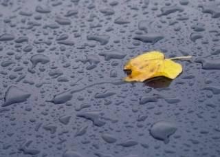 Утренний дождь подтопил Киев