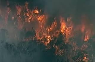 ЧП в Австралии: к Сиднею приближается гигантский пожар