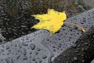 Стало известно, когда в Украине начнется серьезное похолодание и вновь пойдут дожди