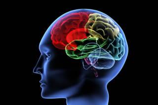 Ученые выяснили, как людям не сойти с ума