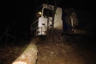 Под Киевом из-за уснувшего водителя фура эпично улетела прямо в лес