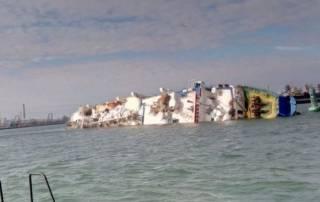 В Черном море затонул корабль с овцами