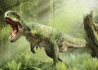 Палеонтологи выяснили о динозаврах кое-что сенсационное