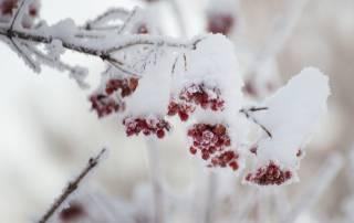В конце недели непогода обрушится на Украину с новой силой