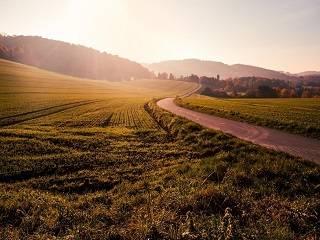 Представители Церквей считают, что открытие рынка земли невозможно