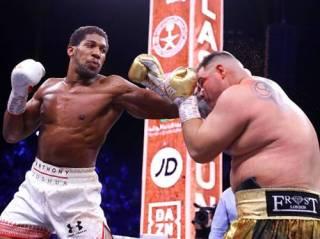 Бокс в пустыне: Джошуа берет реванш у толстяка Руиса