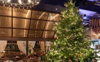 Самая дорогая рождественская елка в мире оказалась в 35 раз дороже Главной елки Украины