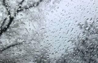 Странная погода в Киеве уже побила древний температурный рекорд