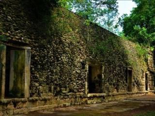 Ученые нашли в джунглях Мексики огромный дворец майя