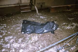 В Киеве перед Новым годом трагически погибла молодая женщина