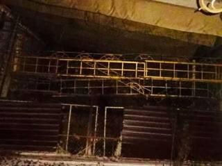 В Киеве на острове обнаружили шестерых «безхозных» тигров