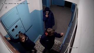 На Николаевщине малолетние посевальщики оригинально мстили тем, кто не открыл им двери