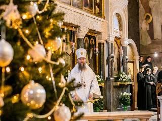 Митрополит Антоний: Рождество Христово – это событие, с которого начинается жизнь каждого человека