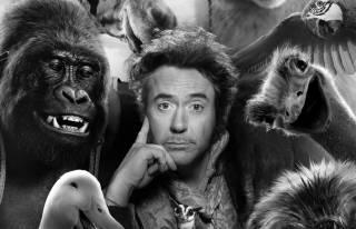 Фильм «Дулиттл»: найти общий язык с человеком труднее, чем с животным