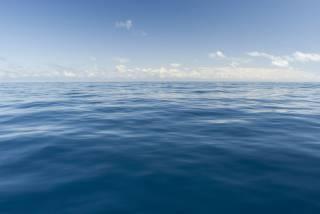 Ученые бьют тревогу: мировой океан продолжает стремительно нагреваться