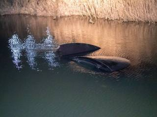 Под Киевом по вине собаки в реке утонул автомобиль с ребенком