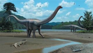 Ученые узнали о динозаврах кое-что внезапное