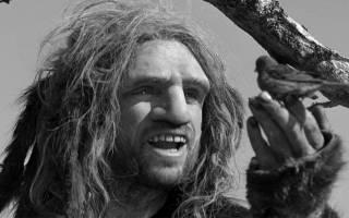 Неандертальцы умели нырять и не только. Последние антропологические открытия