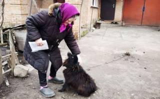 Пенсионерка, которой посоветовали продать собаку, получает субсидию и жжет много газа