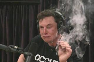 Илон Маск вспомнил, как в молодости едва не погиб из-за денег