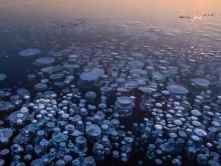 Ученые обнаружили в глубинах Японского моря новую форму жизни