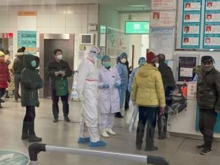 Худшее уже позади? Китайские ученые дали прогноз по коронавирусу