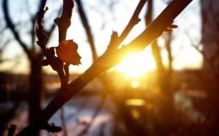 Синоптики поведали, какой будет погода в Украине в последний день зимы